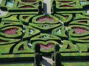 cœurs jardin