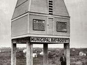 Maison municipale pour chauve-souris