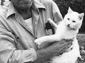 "quand pense qu'après mort,"" Charles Bukowski, chat, femme."