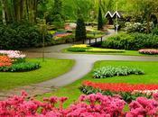 Jardin monde