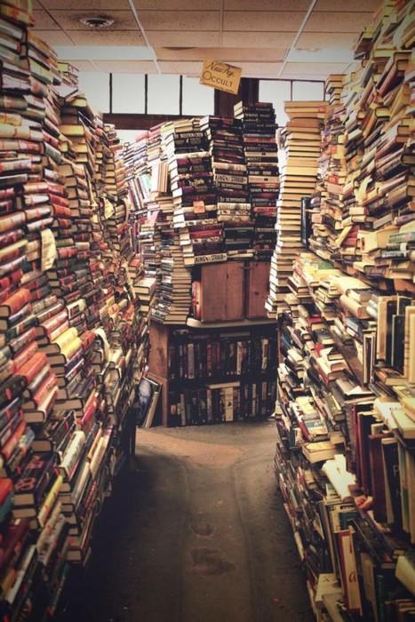 Coup de coeur pour Bookshelf Porn