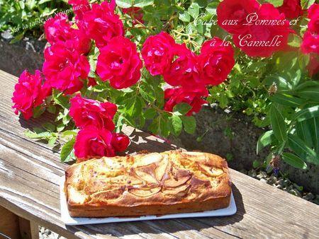 Cake aux Pommes et à la cannelle 1