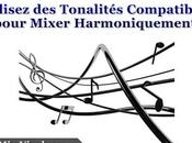 Harmonique Exemple Concret