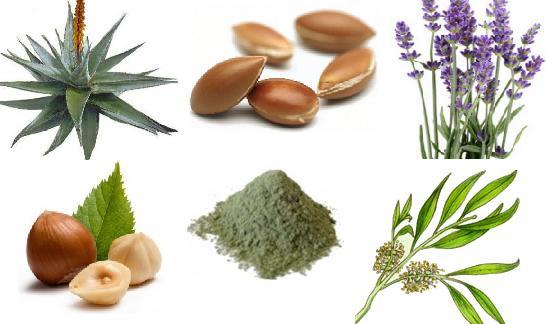 Recettes naturelles contre l'acné modérée et les cicatrices d'acné (2)