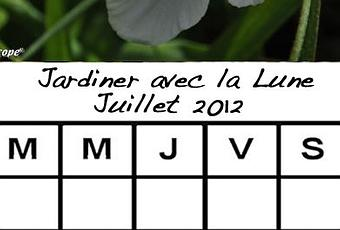 jardiner avec la lune au mois de juillet 2012 paperblog. Black Bedroom Furniture Sets. Home Design Ideas