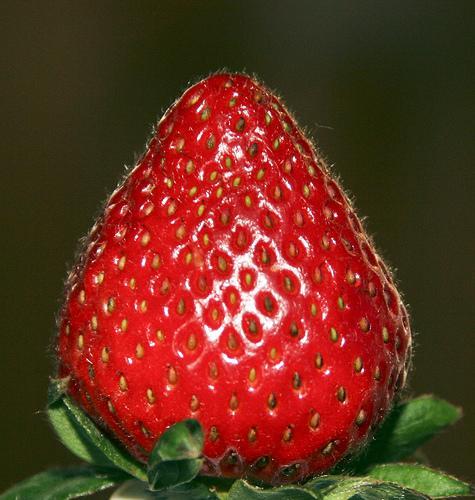 Manger 5 fruits et légumes par jour ?