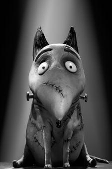 Frankenweenie: bande annonce en français et fiches des personnages