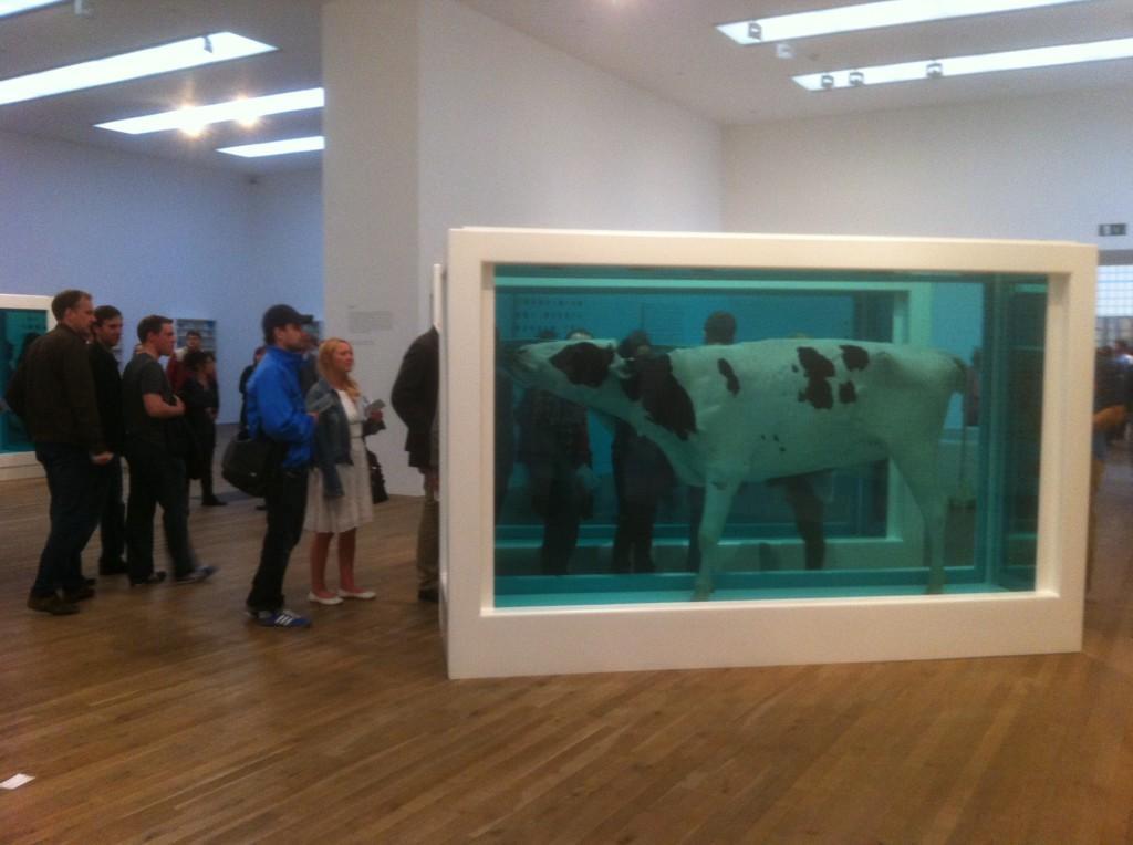 Tate Modern, Damien Hirst : artiste ou publicitaire ?
