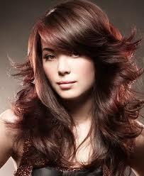 pensez vos cheveux passez la coloration vgtale - Coloration Reflet