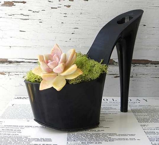 rachel mahlke un petit pot de fleur dans une chaussure. Black Bedroom Furniture Sets. Home Design Ideas