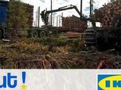 [Mondialisation Lobbies transnationaux] Pétition IKEA, bien pire qu'un marchand meubles Sauvons Forêt
