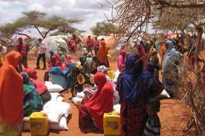 Somalie : réflexion sur l'autosuffisance
