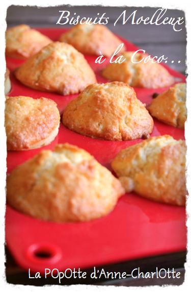 Biscuits MOelleux à la COcO
