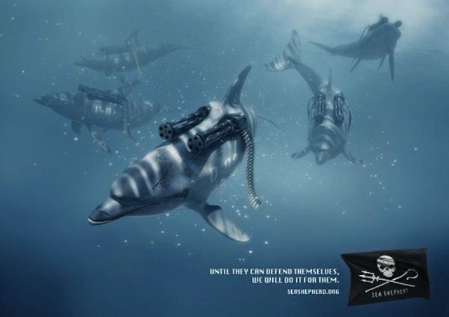 Leïla en vert et contre tout: Sea Shepherd et ses baleines à bombe