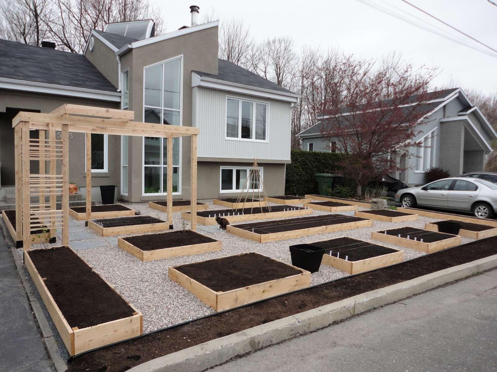 Un potager urbain qui fait les manchettes paperblog - Creer un jardin potager ...