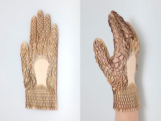 Les gants de Renee Ver...