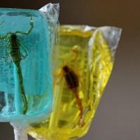 Scorpions en sucette