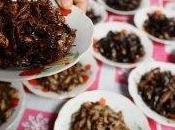 Entomophagie, manger insectes pour déjeuner