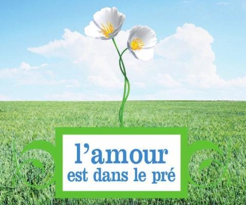 http://www.kulq.com/wp-content/uploads/2012/08/l-amour-est-dans-le-pre.jpg