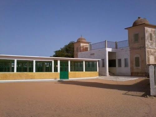 Au Sénégal, des résidus végétaux au secours de l'électrification rurale
