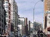 Brooklyn Follies Paul Auster