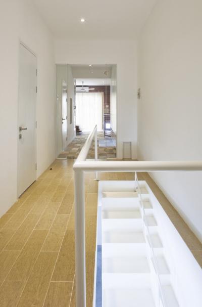 escalier pour chiens par l agence 07beach paperblog. Black Bedroom Furniture Sets. Home Design Ideas