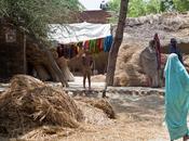 India 2012 villages