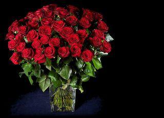 Offrir des roses combien et comment paperblog for Offrir des roses