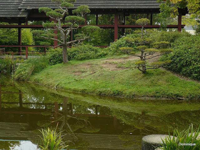 le quai de versailles nantes jardin japonais paperblog. Black Bedroom Furniture Sets. Home Design Ideas