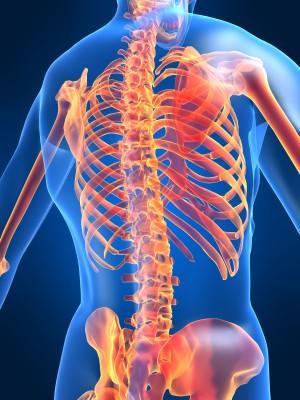 Le traitement de linstabilité de lépine dorsale à la hernie
