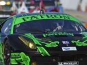 ALMS: Ferrari triomphe Petit Mans