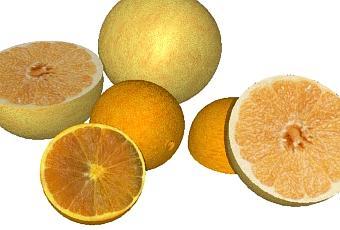 recette de shampoing naturel anti poux l huile essentielle de citron voir. Black Bedroom Furniture Sets. Home Design Ideas