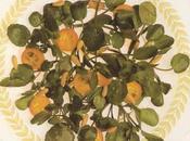 Salade cresson fontaine kumquats dorés pignes grillés