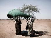 Reportages Sahel