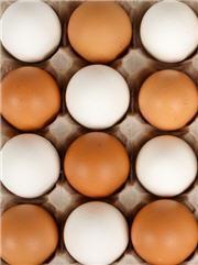 Le Saviez-vous ► Quelle différence y a-t-il entre l'oeuf brun et l'oeuf blanc côté nutrition ?