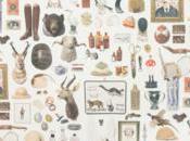 L'art collectionner petites envies pour plus être envieux
