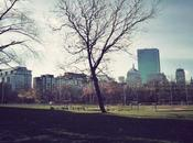 Beacon Hill perdre dans Boston