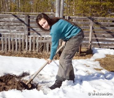 Jardinage : les bons conseils pour fin janvier