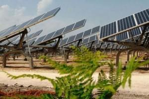 Médoc: installation d'une ferme solaire à Naujac