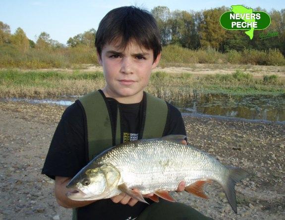 La pêche russe 3.1 anguille lappât