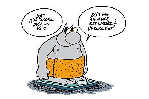 Humour : Régime minceur - Conseils pour maigrir illustrés