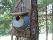 idées nichoirs maisons oiseaux, plus classiques originales