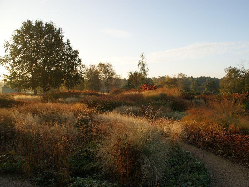 Piet oudolf landscape designer paperblog for Landscapes in landscapes piet oudolf