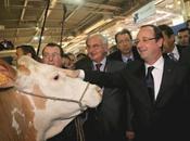Chômage vieilles recettes François Hollande