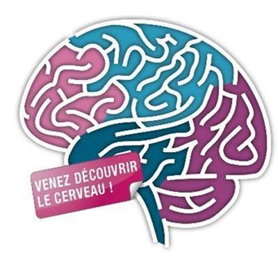 Semaine du cerveau
