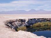 Pedro Atacama, s'en plein mirettes!