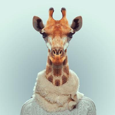 Photos drôles où touchante de toute animaux autres que les ânes ! Animal-style-L-Xgfl6r