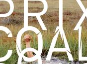 Remise Prix COAL Environnement 2013