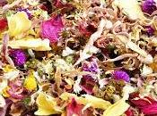 Infusions fleurs
