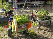 Garden'tricycles